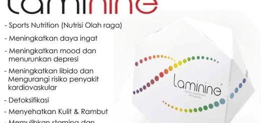 Manfaat_Laminine