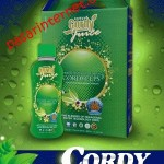 testimoni kencing manis sembuh dengan cordy juice