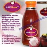 Khasiat-Xamthone