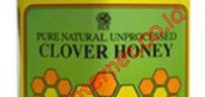 clover honey2
