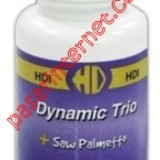 dynamic saw palmetto2