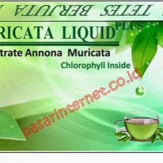 king muricata 3